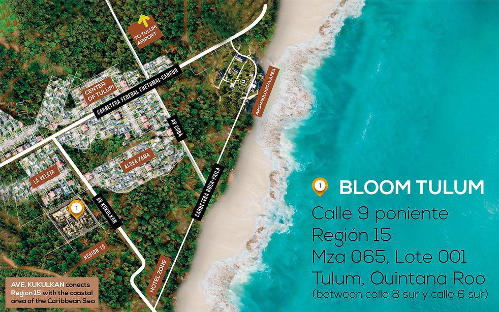 MAPA BLOOM WEB INGLES.jpg