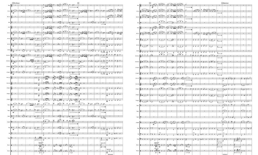 Fidelium (Concert band)