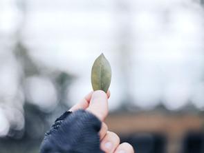 Di cosa parliamo quando parliamo di mindfulness