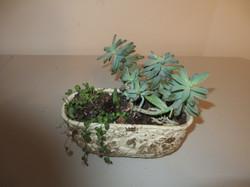Re-purposed pot