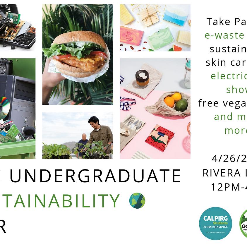 Undergraduate Sustainability Fair