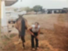 Mark Cattle Property.JPG