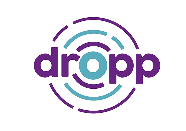 Dropp_Branding_Website-Visuals_Dropp-Log
