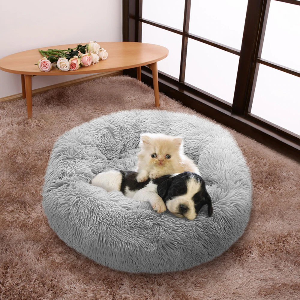 Grab a similar dog bed at A Pawfect Gift