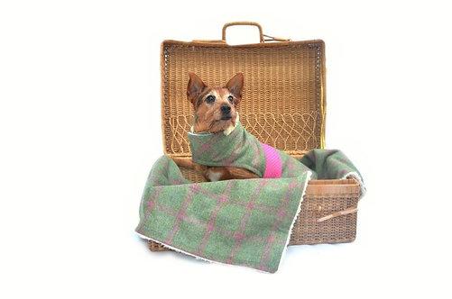 Luxury Minkeys Tweed Pet Blanket