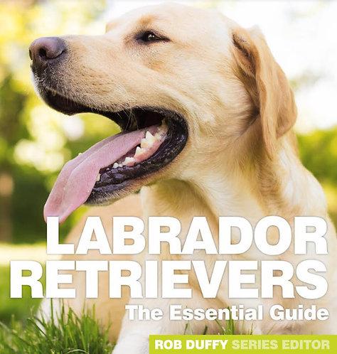 Labrador Retrievers The Essential Guide