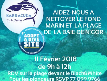 Grand nettoyage de la baie et de la plage de N'Gor par les plongeurs et non-plongeurs !