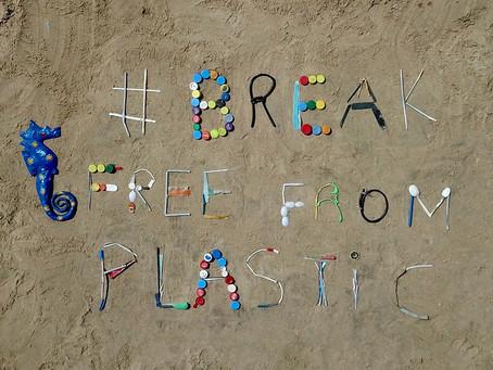 Nettoyage de la baie de N'GOr - International coastal cleanup