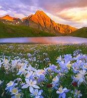 colorado sunsets8.jpg