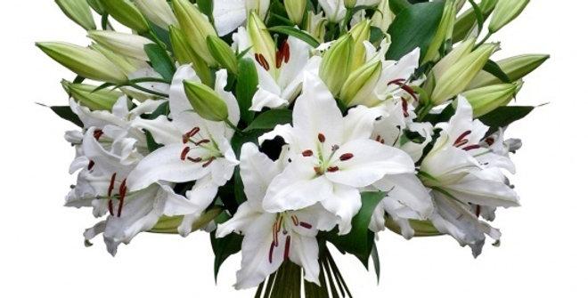 Bouquet exclusif de tendre lys blanc