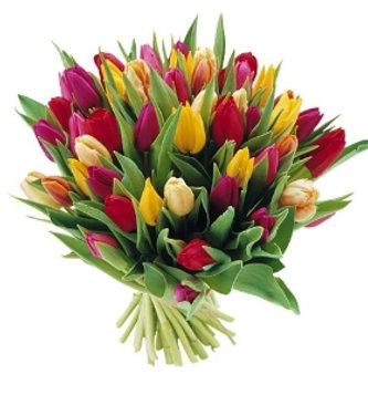 Bouquet de tulipes en mix de couleurs