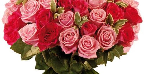 Rêve de roses