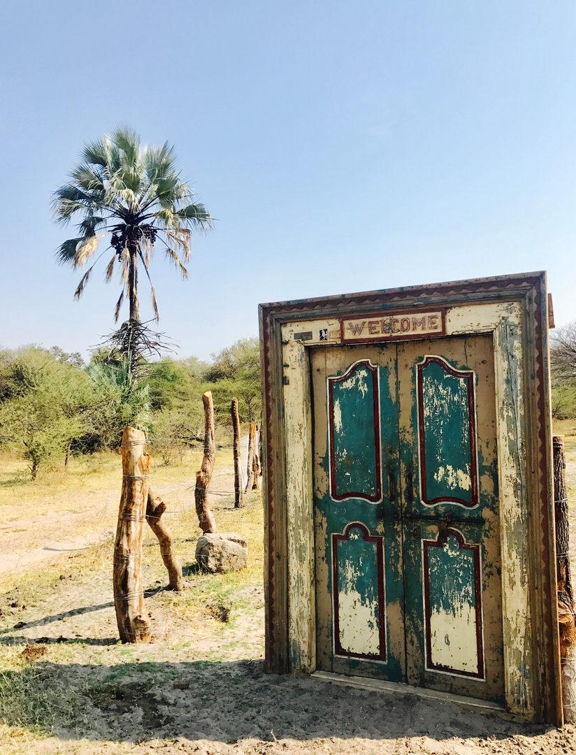 Enter through our magical welcome door