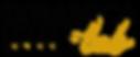 logo DINAMICA LAB -01.png