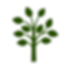 natur-grün.png