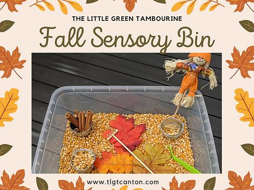 Fall Sensory Bin (materials only, NO bin)