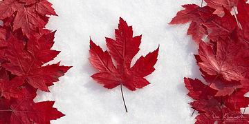 leafflag.jpg