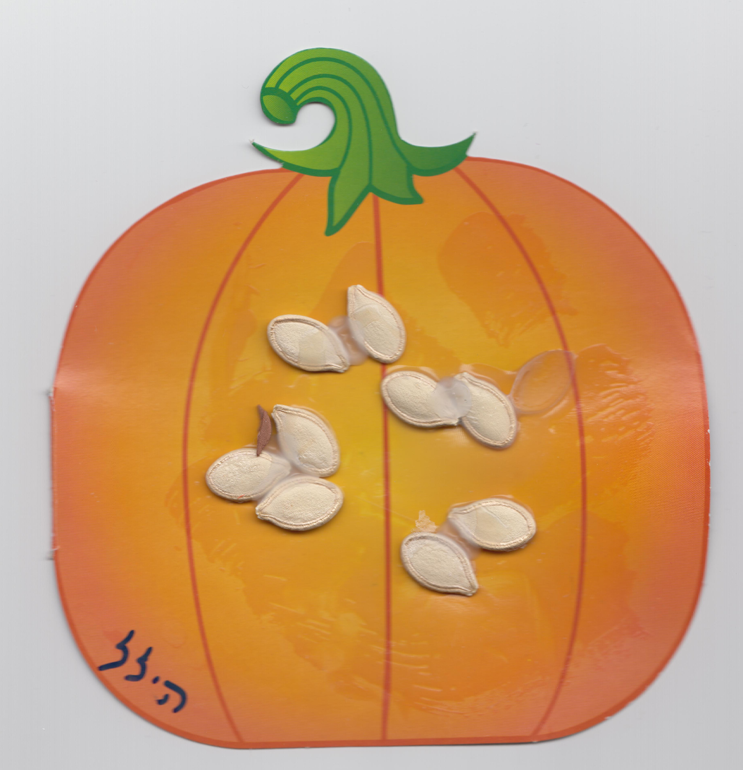 Pumpkin seeds art work