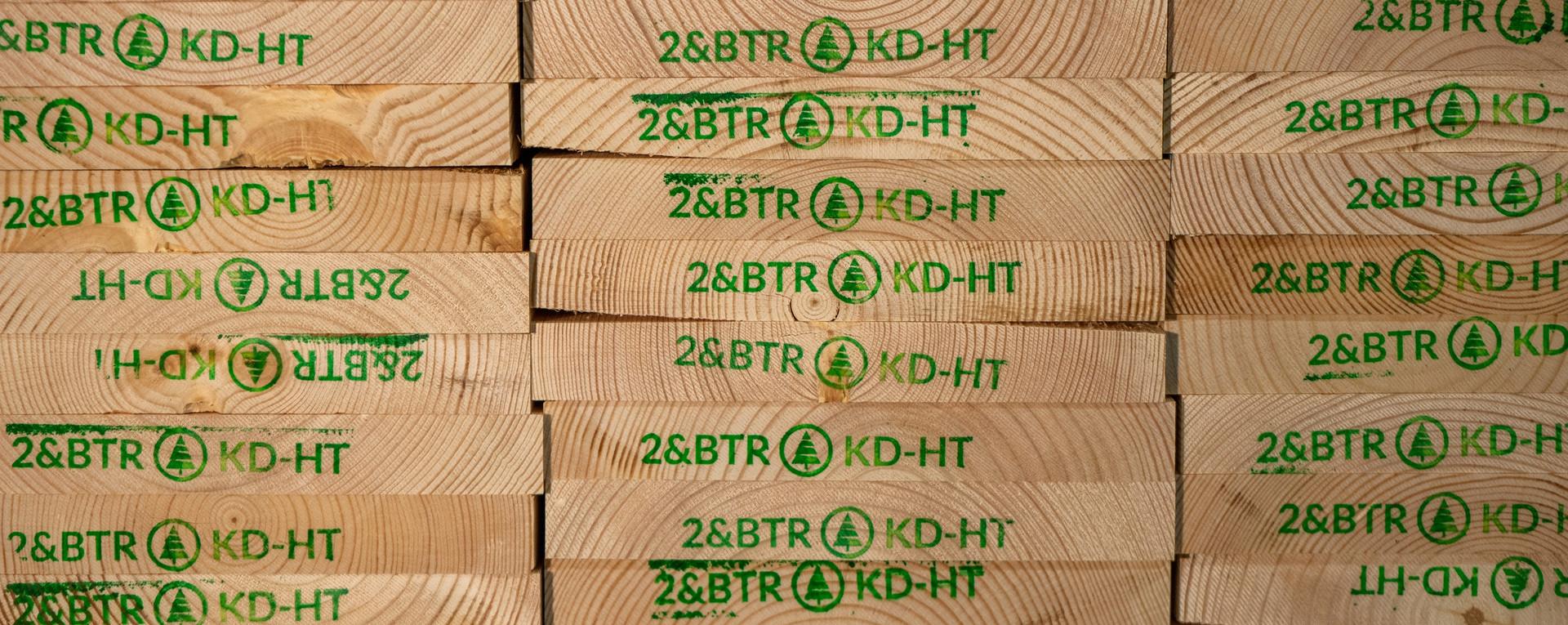 Premium Scots Pine