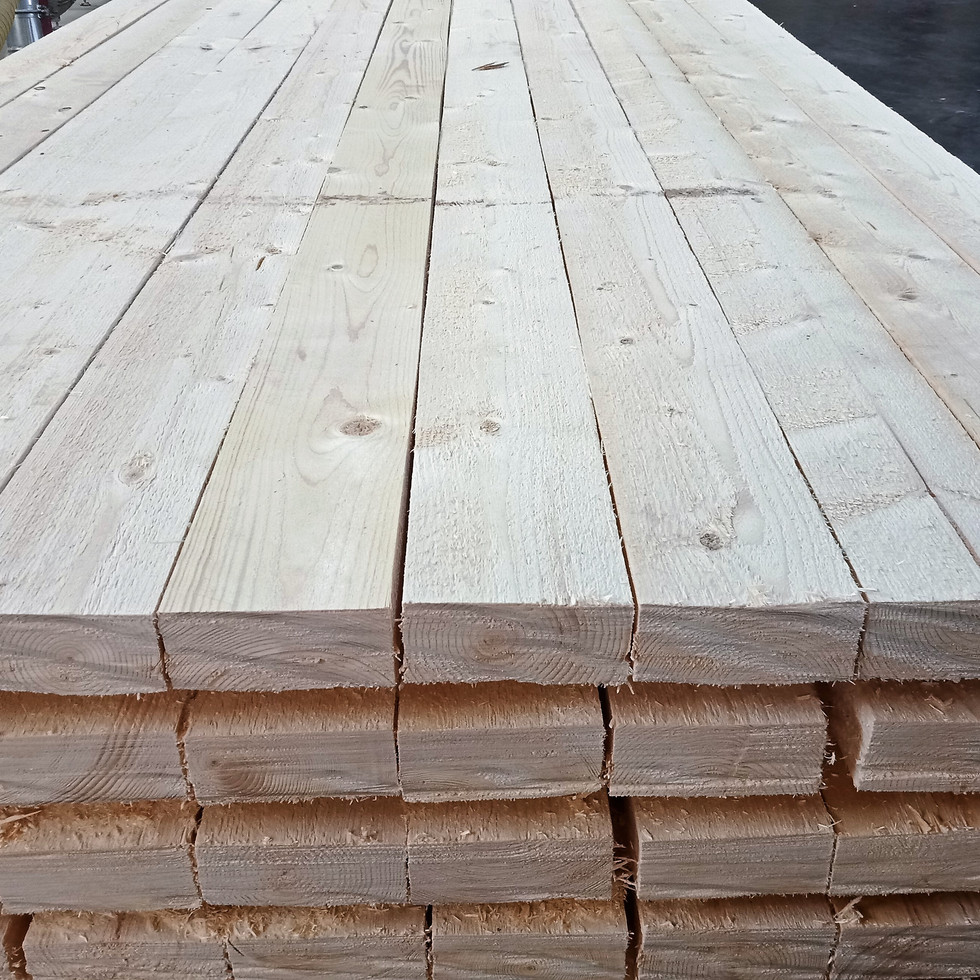 Premium Norway Spruce