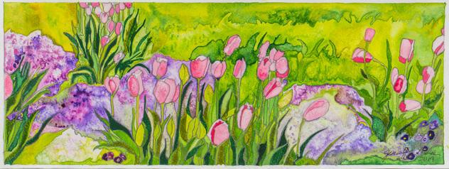Butterstone Tulips 2