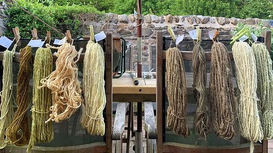 lovage-wool-and-stringw.jpg