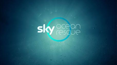 Sky Ocean Rescue