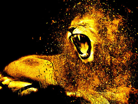 Let the Lion Roar!