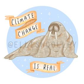 Walrus - Climate Change