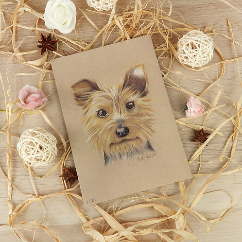 Vespa the Yorkshire Terrier Print - Limited Edition