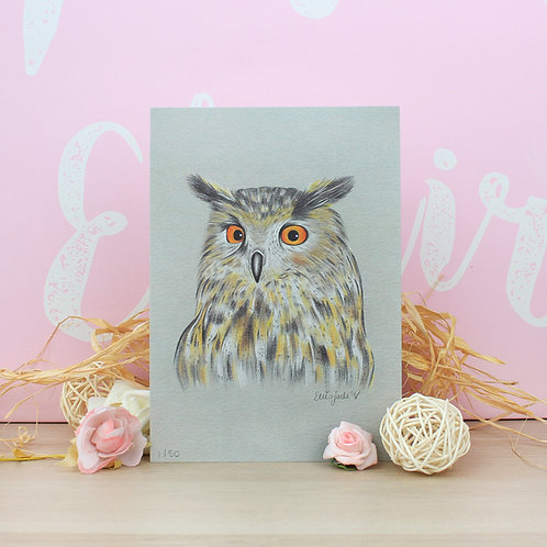 Owl Print - Limited Edition