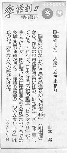 艸_毎日新聞_0624.jpg