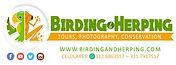 logo birding.jpg