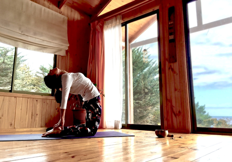 Sala de Yoga On-line