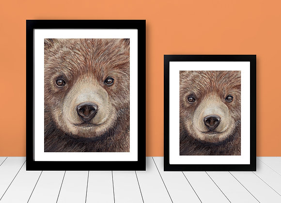Framed Print - Close Up Bear