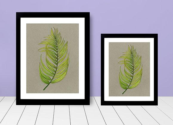 Framed Print - Palm Leaf