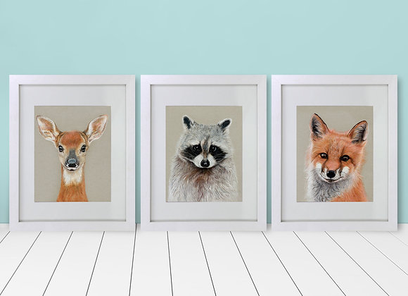 Framed and Matted - Woodland Animal Collection