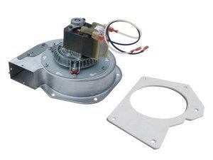 Exhaust Blower Motor & Gasket PP7692