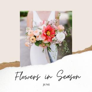 Flowers in Season: June
