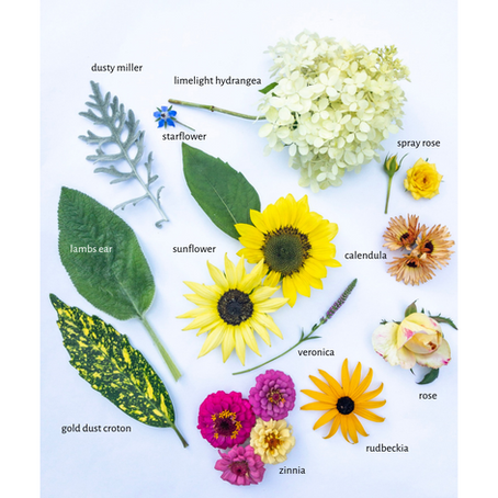 August Flower Garden Snapshot