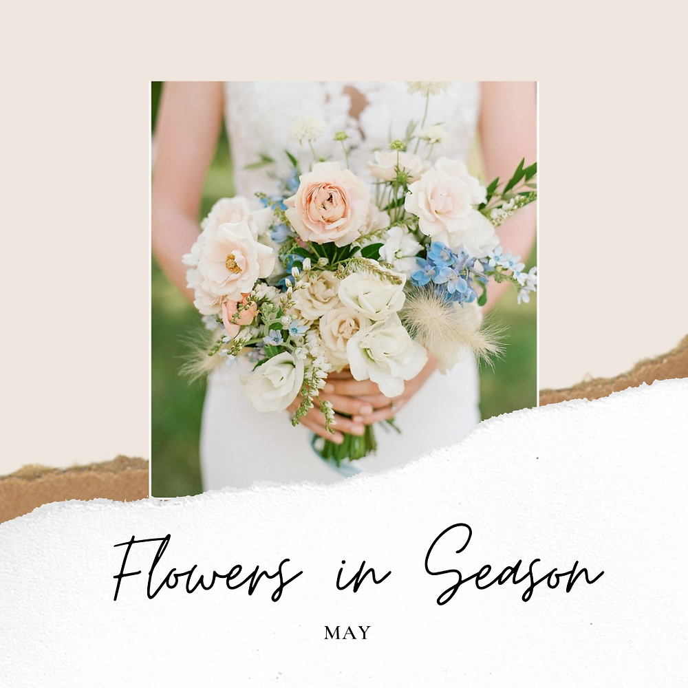 flowers in season, may, may wedding, wedding flowers, spring wedding, spring flowers, interesting varieties for spring, may bouquet, what flowers for may, bride