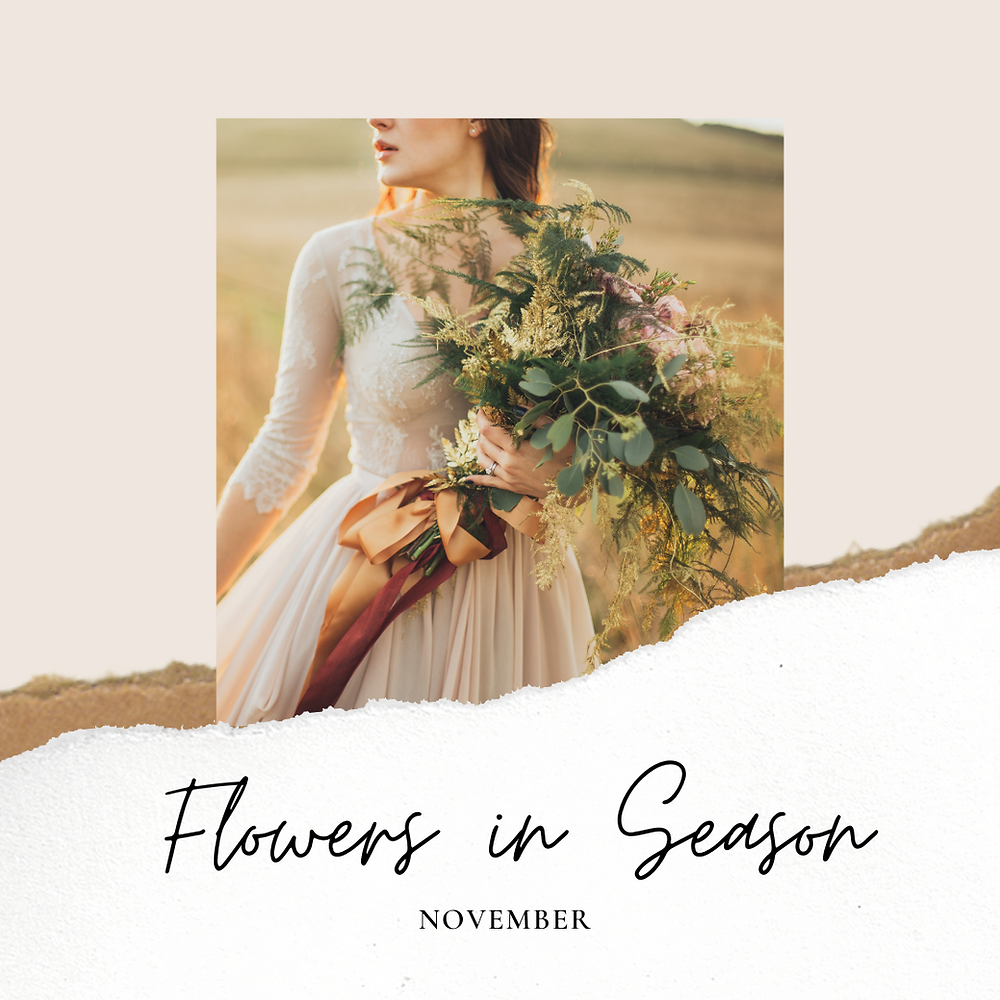 flowers in season, november, november wedding, wedding flowers, fall wedding, fall flowers, interesting varities
