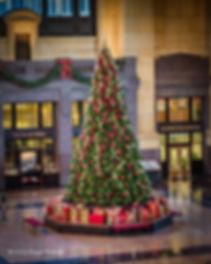 Union Station Christmas Tree.jpg