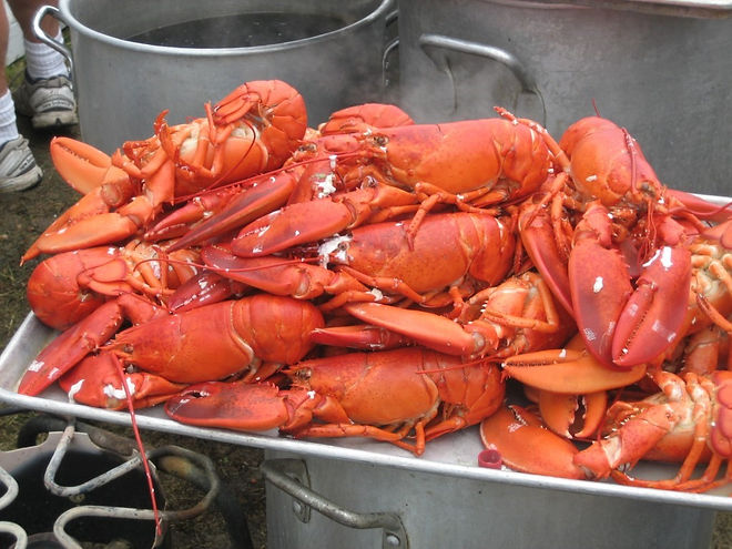 Lobsters and Clambake