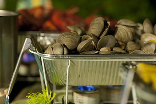 Steamed Clams Clambake
