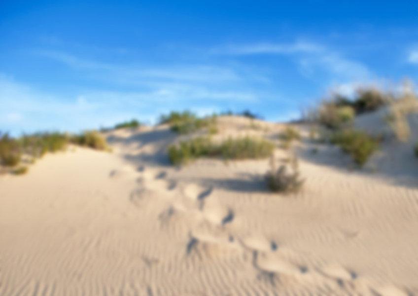 playa-punta-umbria-ciudad-dunas-canaleta