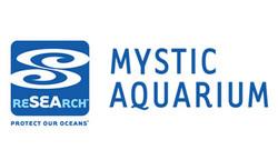 mysticacquarium