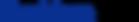 블루문소프트