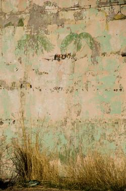 palm trees, oild building.jpg