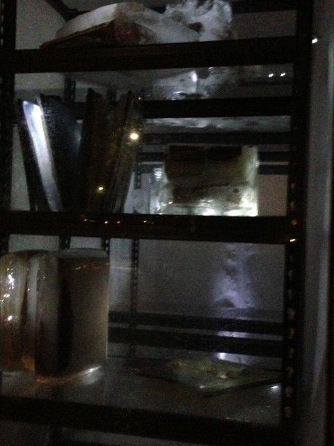 Cold Storage Cheri Ibes